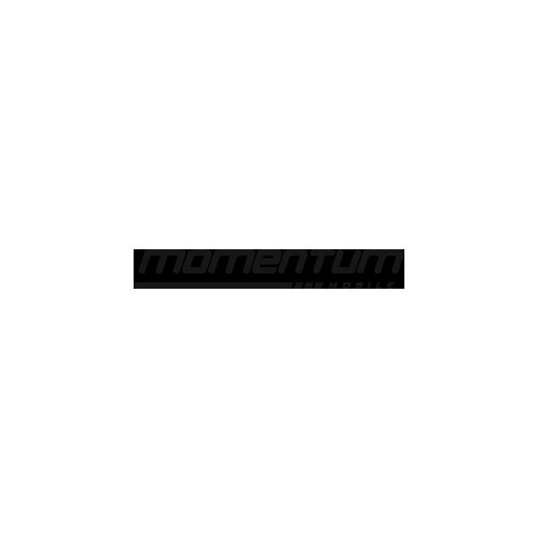 momentum-mobile-logo